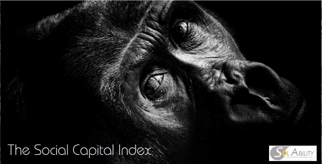 Social Capital Index